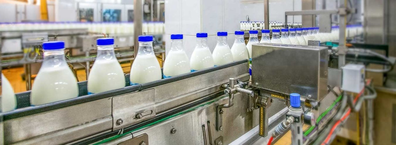 dairy industry bottling conveyor